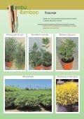 Vivaismo Verde Pubblico Paesaggismo Vivaismo Verde Pubblico ... - Page 6