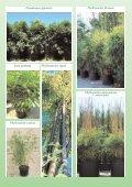 Vivaismo Verde Pubblico Paesaggismo Vivaismo Verde Pubblico ... - Page 7