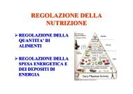 REGOLAZIONE DELLA REGOLAZIONE DELLA NUTRIZIONE