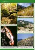 Monte Siserno.pdf - Page 3