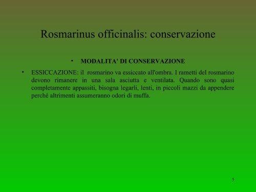 Parte speciale B: Rosmarino (Carlo Zucca)