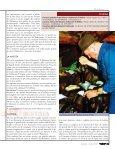 Una magia chiamata Balsamico - L'Informatore Agrario - Page 2