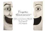 Presentazione del progetto e documentazione delle ... - N. Zingarelli