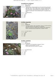 Alpine Planter - Rhodospecialisten.dk