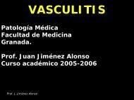 Vasculitis (PDF 1.24MB 06-02-2012)