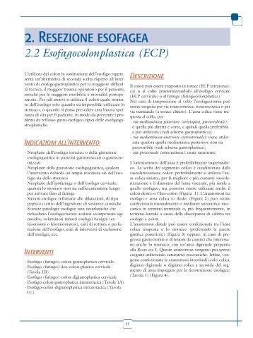 2.2 Esofagocolonplastica - Endoscopia Diagnostica e Operativa