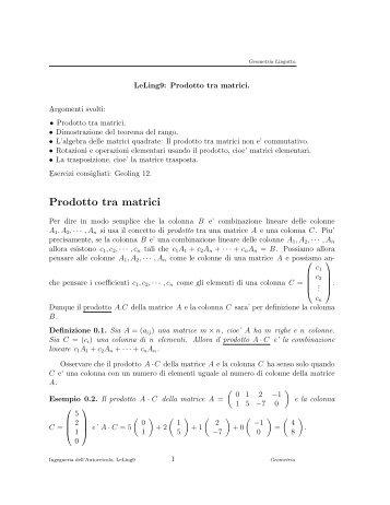 LeLing9 - Dipartimento di Matematica