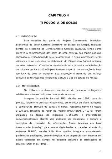 CAPÍTULO 4 TIPOLOGIA DE SOLOS - IEPA
