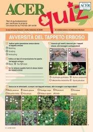 AVVERSITÀ DEL TAPPETO ERBOSO - Il Verde Editoriale