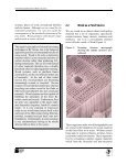 Understanding Biodeterioration of Wood in Structures - Canadian ... - Page 5