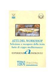 Atti del Workshop
