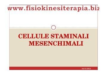 CELLULE STAMINALI MESENCHIMALI - Fisiokinesiterapia.biz