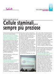 Cellule staminali... sempre più preziose - Diagnosi & Terapia