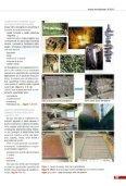 Pretrattamento delle superfici mediante ... - Pangborn Group - Page 3