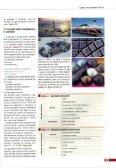 Pretrattamento delle superfici mediante ... - Pangborn Group - Page 5