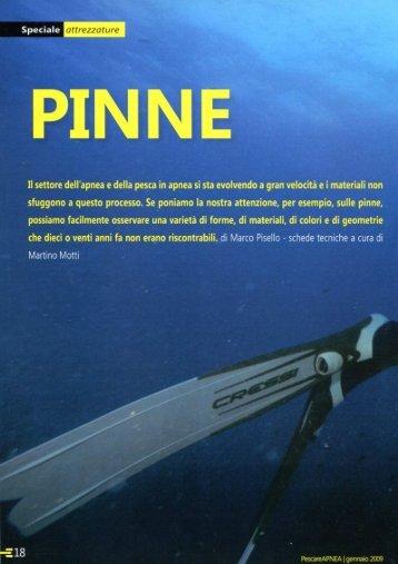 Articolo sulle Pinne - Architetto Marco Pisello - Monza e Brianza