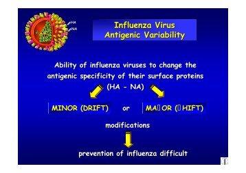 Influenza Virus Antigenic Variability Influenza Virus Antigenic ...