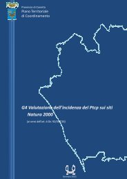G4 Rel.inc_gen10.pdf - Provincia di Caserta