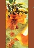 Sottovasi Rondellas Rondella Colorettes Blondas ... - PNP PLAST srl - Page 2