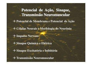 Potencial Sináptico - BCT - Unifesp