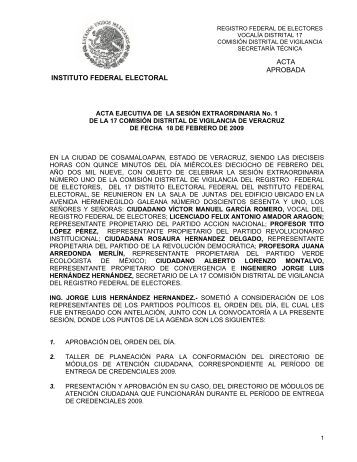 ACTA EJECUTIVA DE LA SESIN ORDINARIA No - Instituto Federal ...