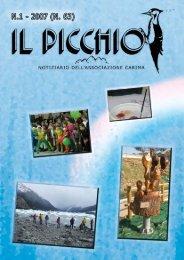 Il Picchio N.1 - 2007 (N. 63) - Associazione Carima