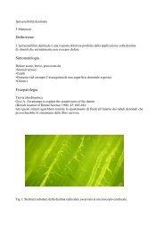Definizione Sintomatologia Fisiopatologia - Accademia Italiana ...