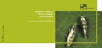 Kastanien schützen – Motten stoppen – Laub ... - Frankfurt am Main