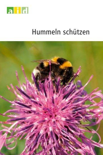 Hummeln schützen - Booklet - Aid
