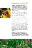 Hummeln schützen - Booklet - Aid - Seite 2