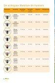 Hummeln schützen - Booklet - Aid - Seite 6