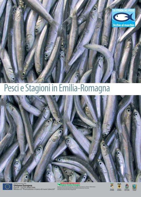 un sacco di pesce nel mare che risale