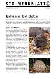 STS-Merkblatt: Igel kennen, Igel schützen - Schweizer Tierschutz STS