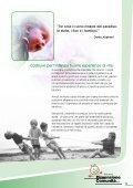 Catalogo Arredi e Giochi da Esterni [6 mB] - Dimensione Comunità - Page 3