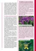 Tutela degli habitat e dei rapaci del Monte Labbro e dell ... - Europa - Page 3