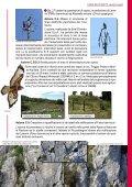 Tutela degli habitat e dei rapaci del Monte Labbro e dell ... - Europa - Page 5