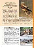 Tutela degli habitat e dei rapaci del Monte Labbro e dell ... - Europa - Page 7