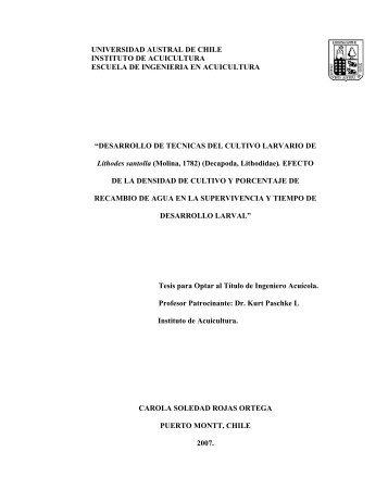 desarrollo de tecnicas del cultivo - CyberTesis UACh - Universidad ...