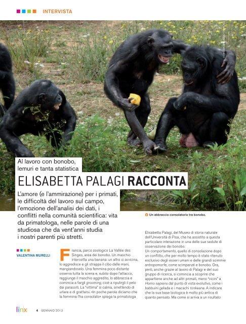 Scarica l'articolo completo in formato pdf - Linx Magazine
