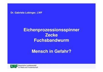 Eichenprozessionsspinner Zecke ... - Waldbesitzer.net
