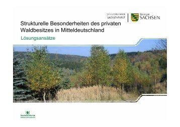 Privatwald in Mitteldeutschland