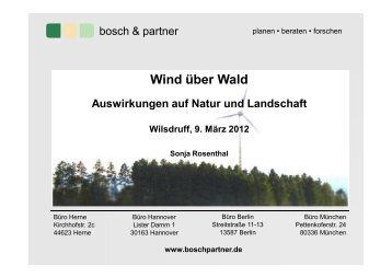 Sonja Rosenthal, Bosch & Partner
