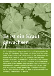 Download 908kb - Stiftung Wald in Not