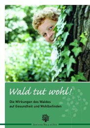 Download 703kb - Stiftung Wald in Not