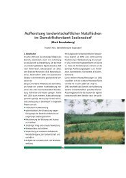 Download 260kb - Stiftung Wald in Not