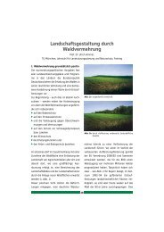 Download 393kb - Stiftung Wald in Not
