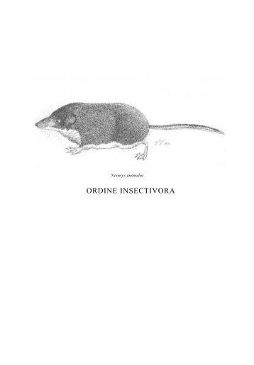 ORDINE INSECTIVORA - Istituto Veneto di Scienze, Lettere ed Arti