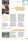 Comune di Ornago - Page 7