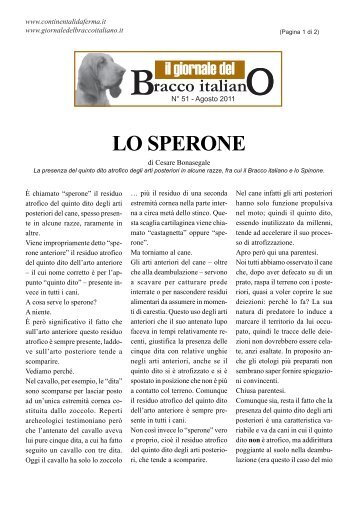 LO SPERONE - Bracco Italiano
