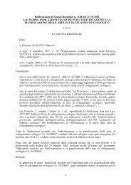 Delibera RT n.1148-2002 Indicazioni tecniche aree collegamento ...